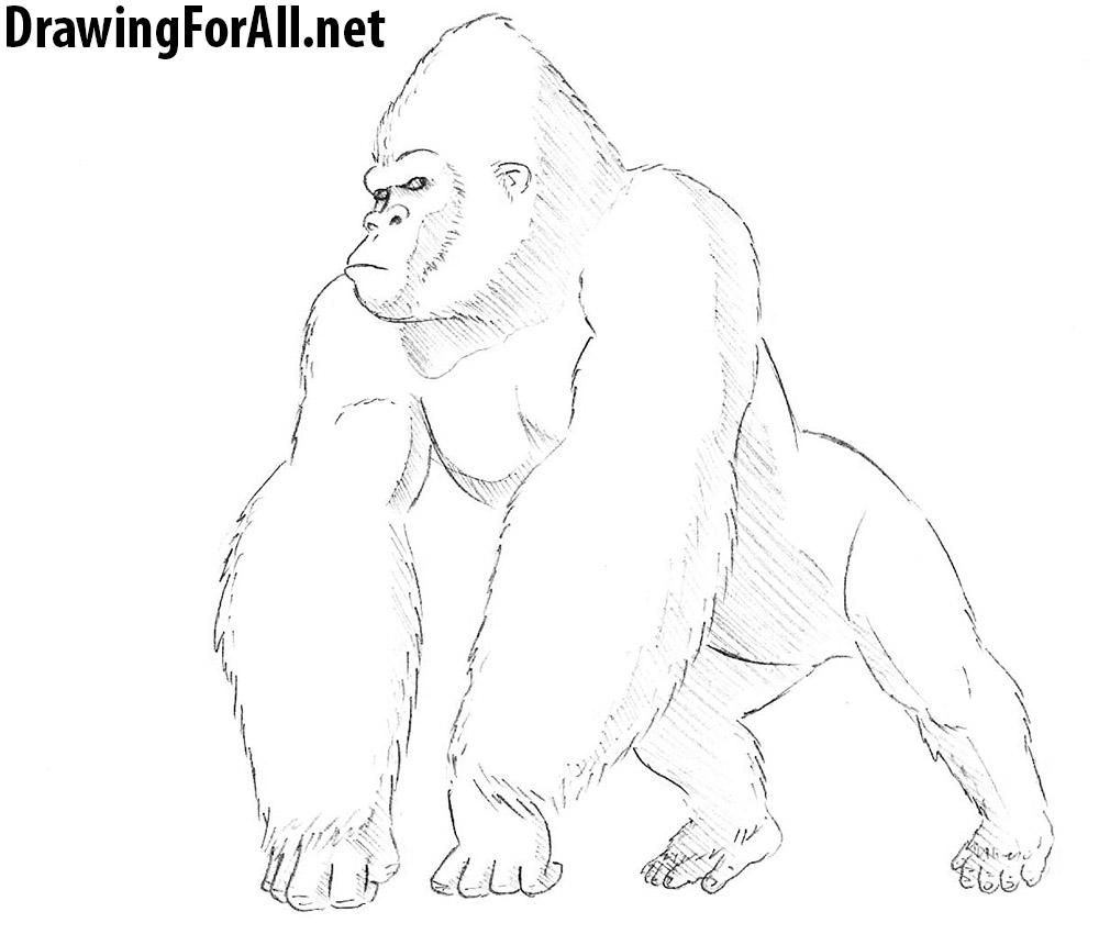 king kong drawing