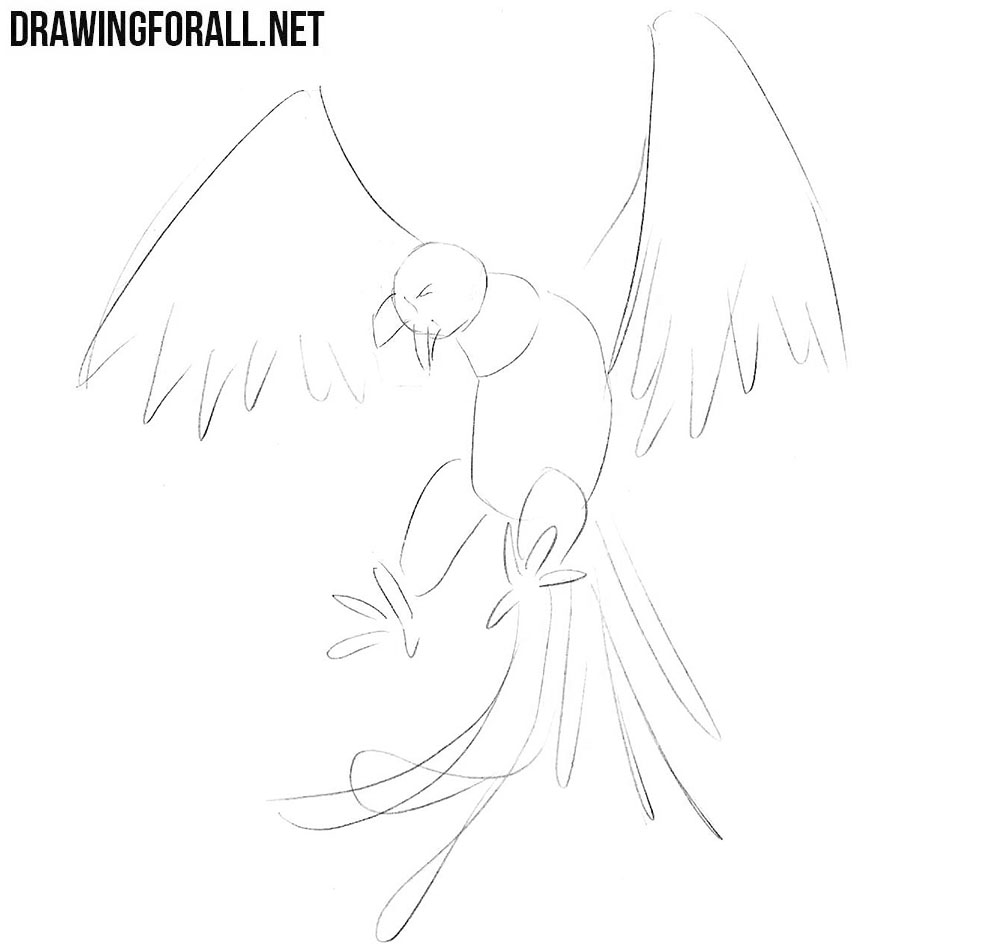 how to draw a phoenix step by step