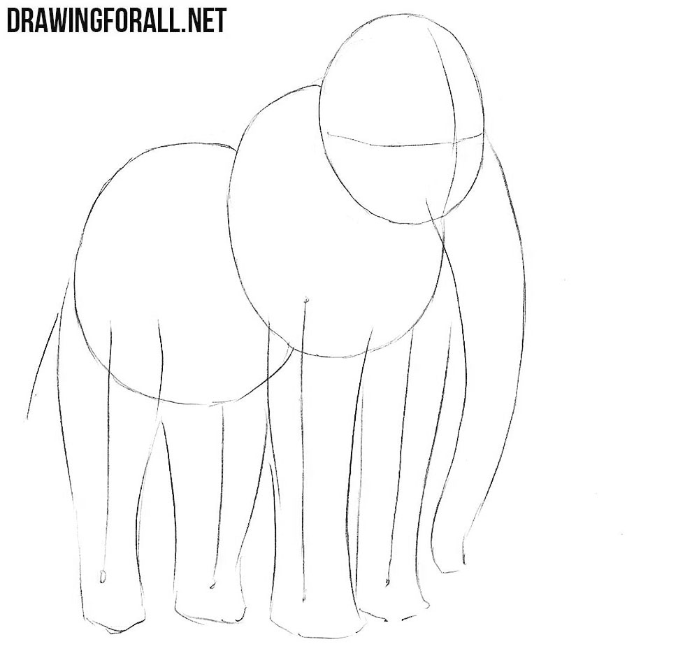 learn to draw a Mammoth step by step