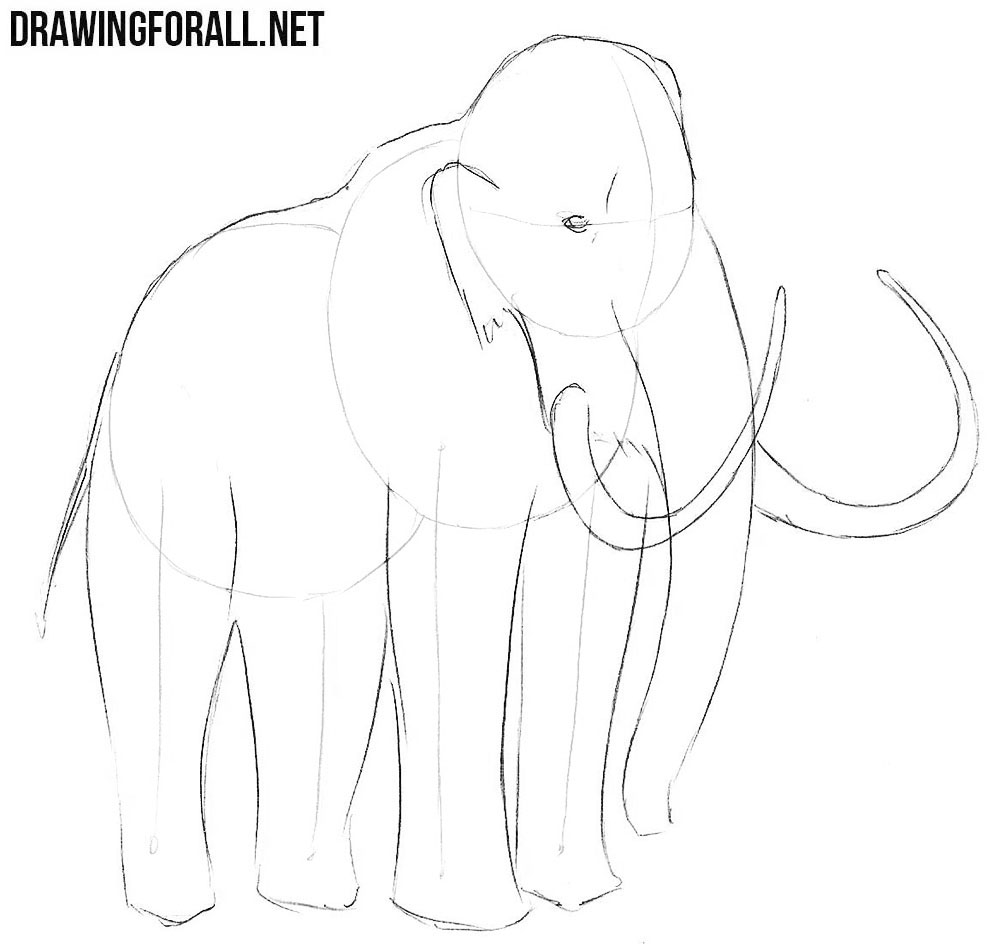 draw a mamoth with a pencil