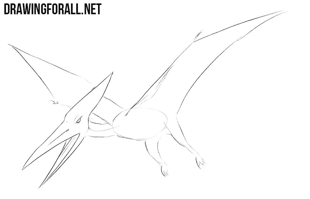 how to draw a pterosaurs