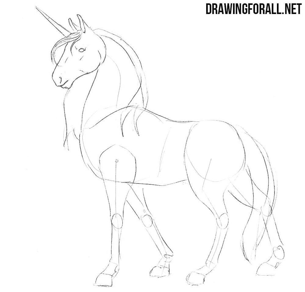 learn how to draw a unicorn with a pencil