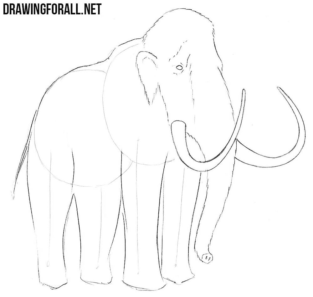how to draw a mammoth step by step