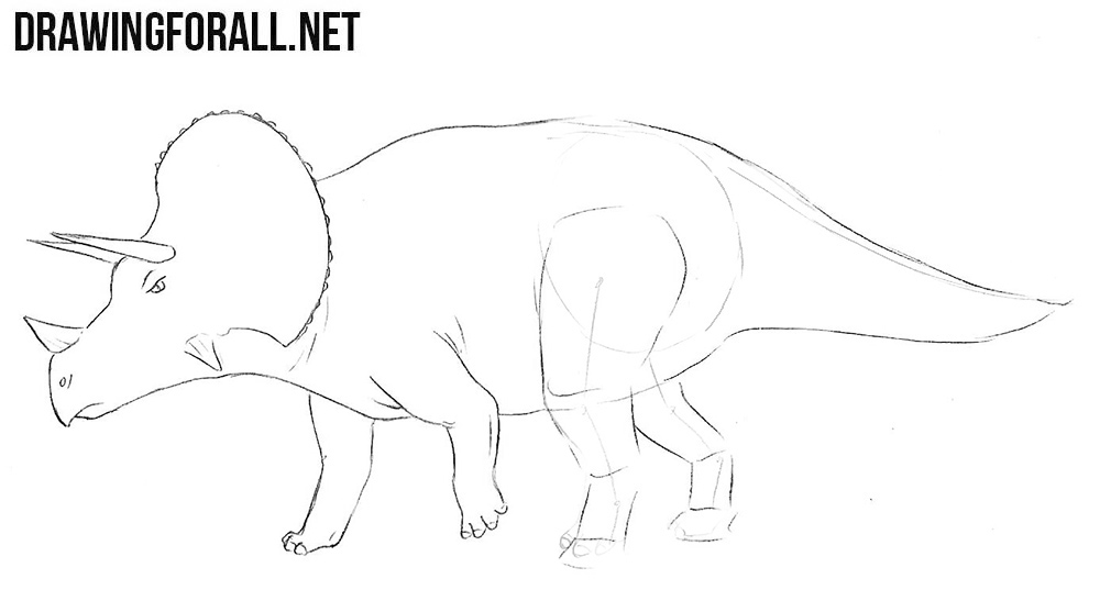 learn to draw a Triceratops