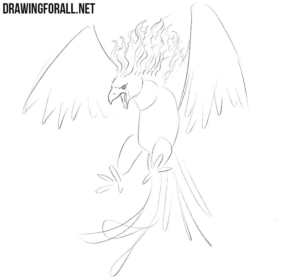 phoenix drawing tutorial
