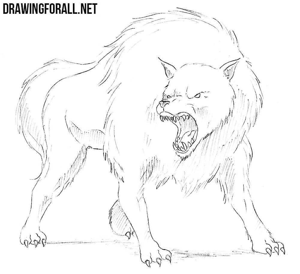 dire wolf drawing