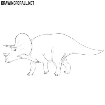 How to Draw a Triceratops