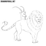 How to Draw a Chimera