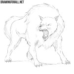 How to Draw a Dire Wolf
