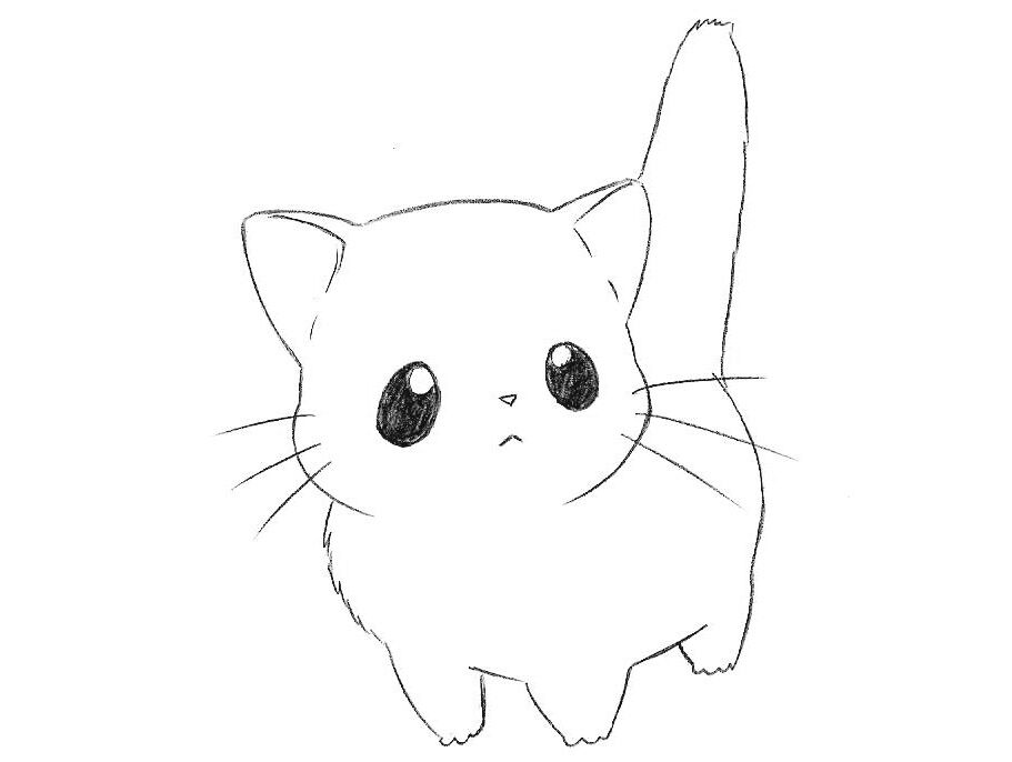 how to draw chibi cat for kids