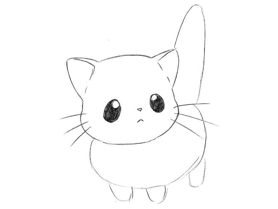 how to draw chibi cat step by step