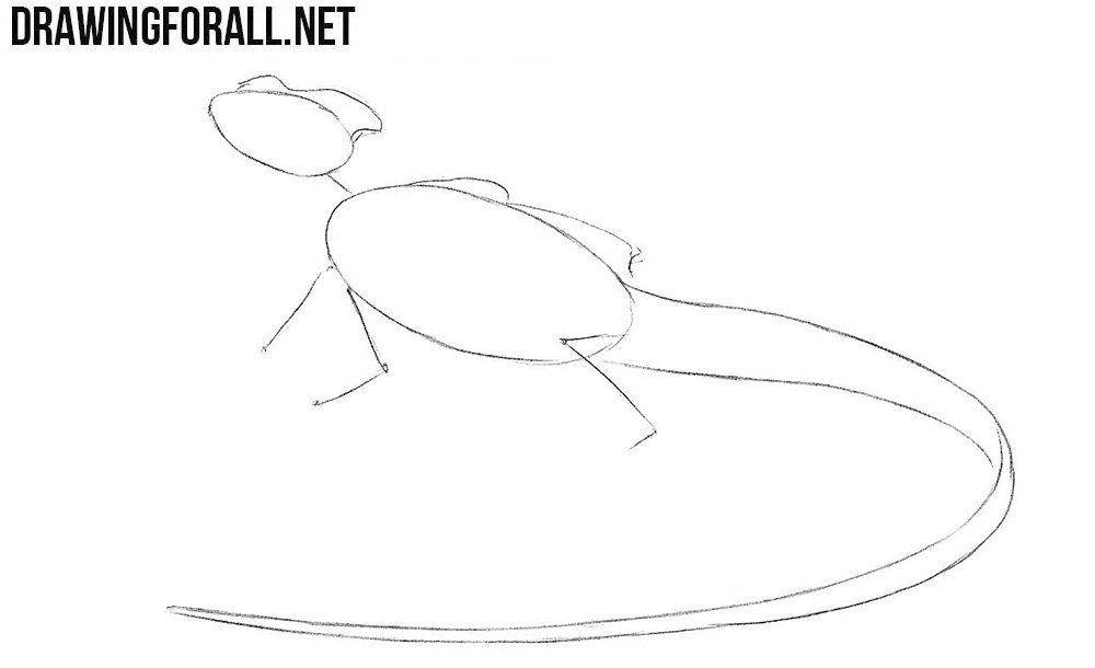 how to draw the basilisk from ha