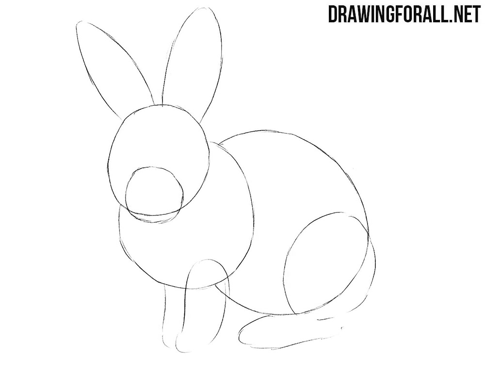 Learn how to draw a rabbit step by step