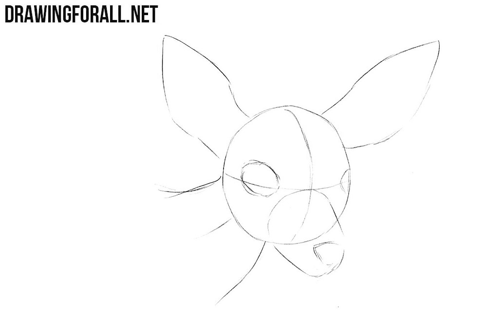 Learn to draw a deer head