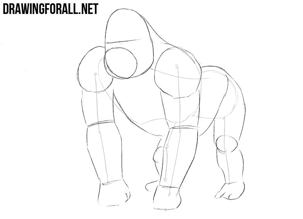 Learn to draw a gorilla