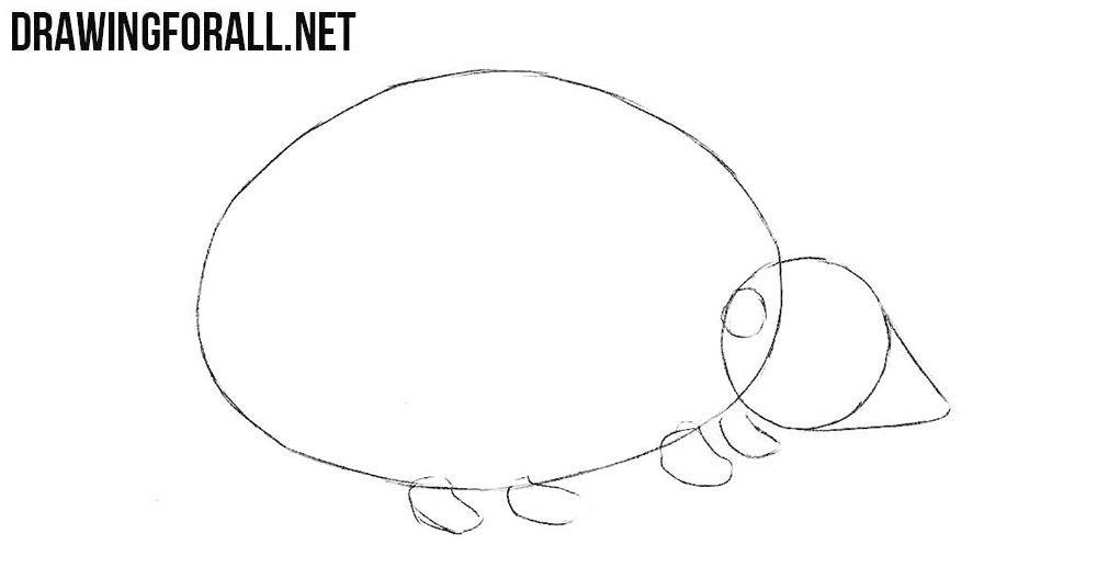 Learn to draw a hedgehog