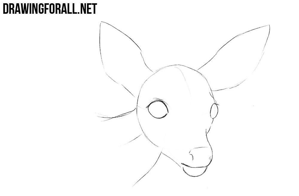 How to draw a little deer head