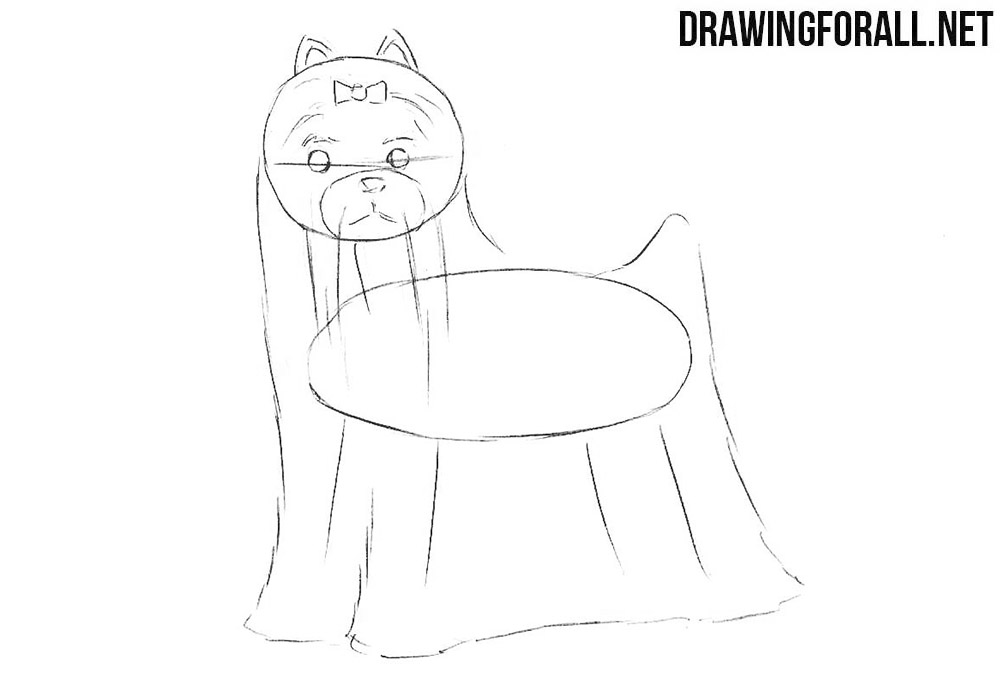 How to draw a little dog