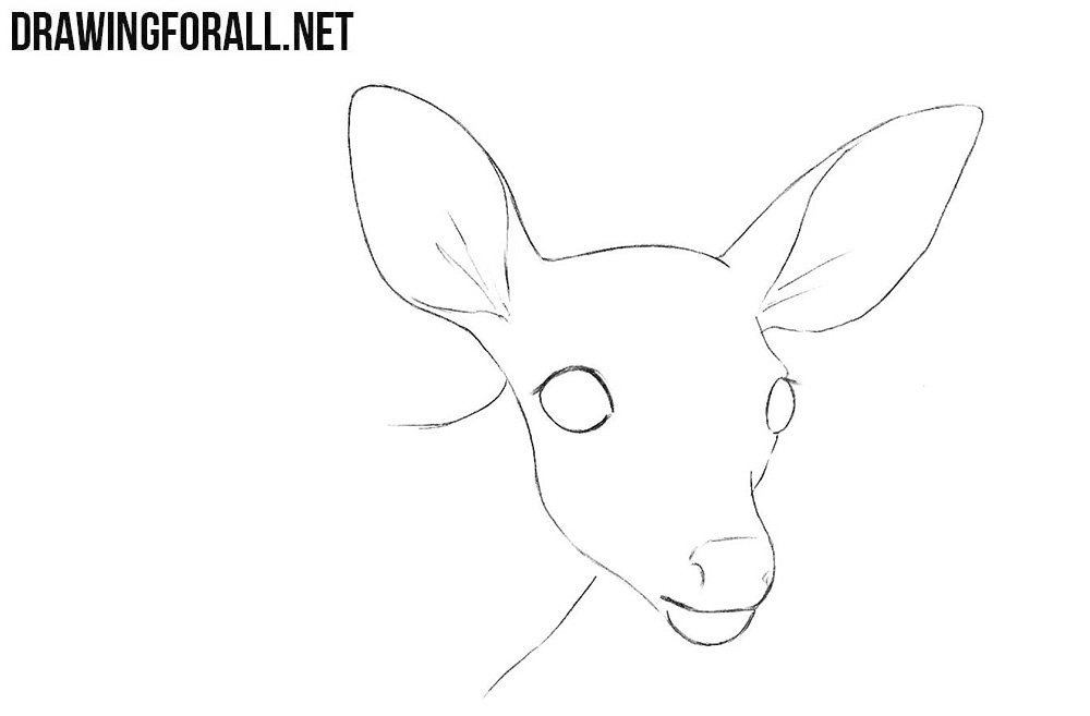 How to draw a little deer