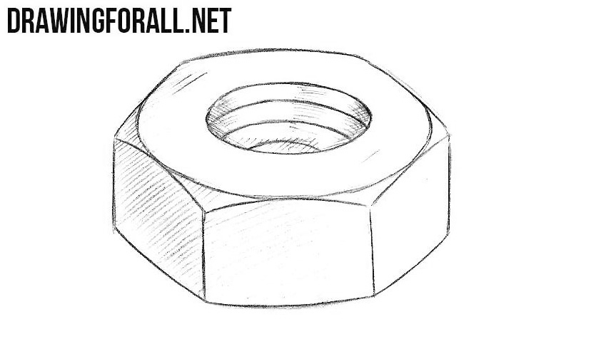 How to draw a nut