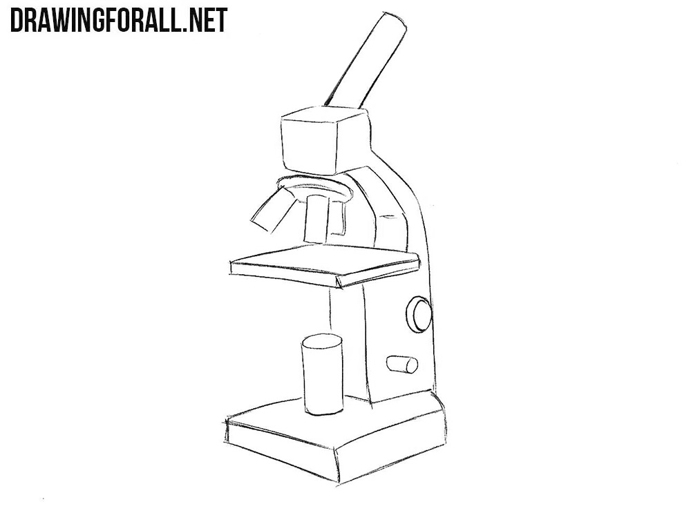 How to sketch a microscope step by step