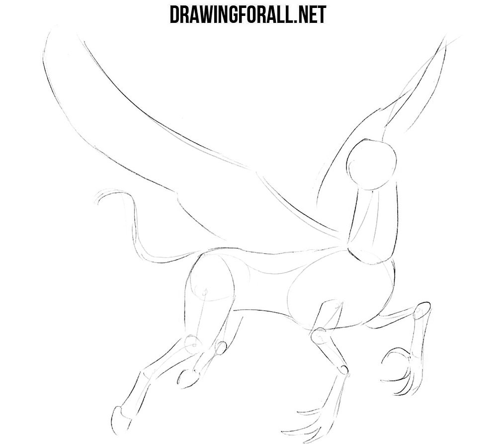 How to draw a hippogriff from fantasy