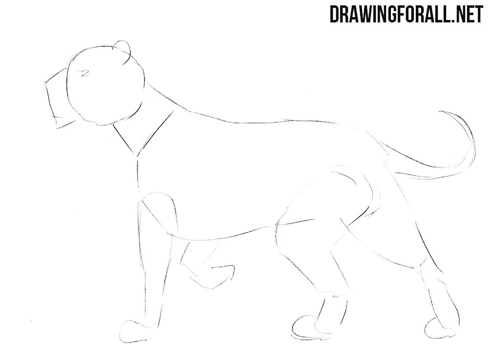 How to draw a mythical lion