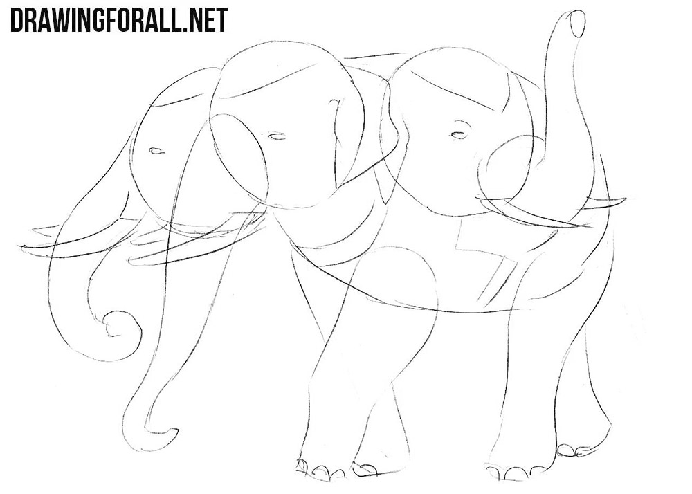How to draw an elephant from myths