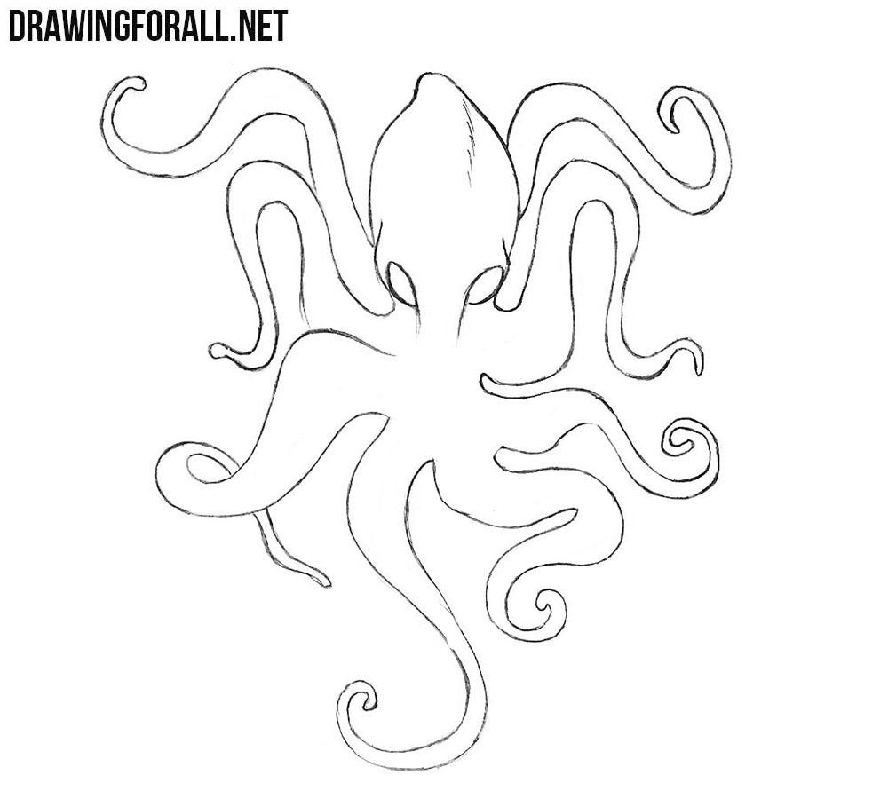 Kraken easy drawing lesson
