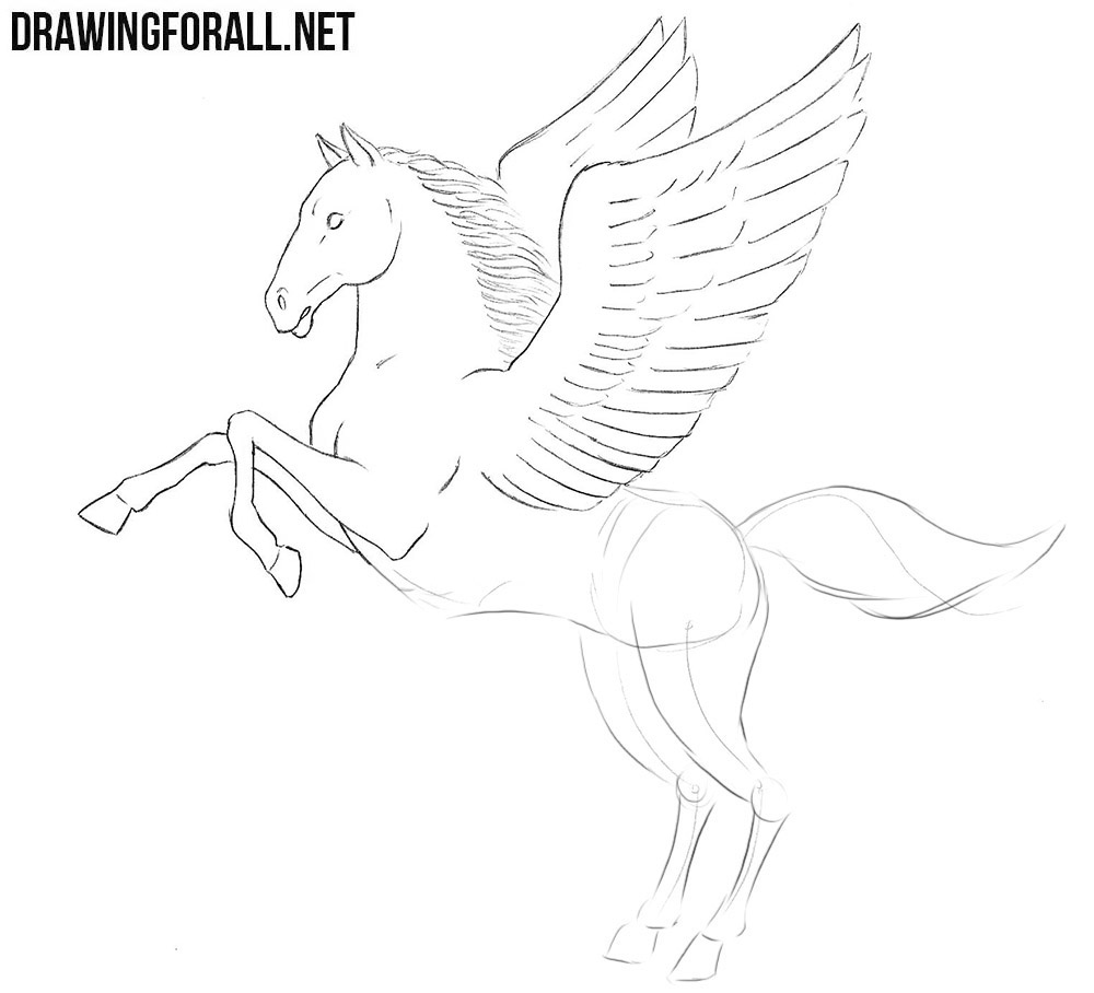 How to draw a Pegasus step by step
