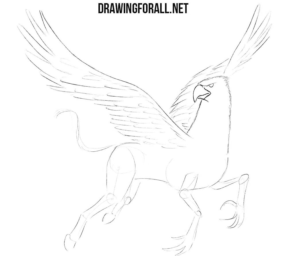 How to sketch a hippogriff
