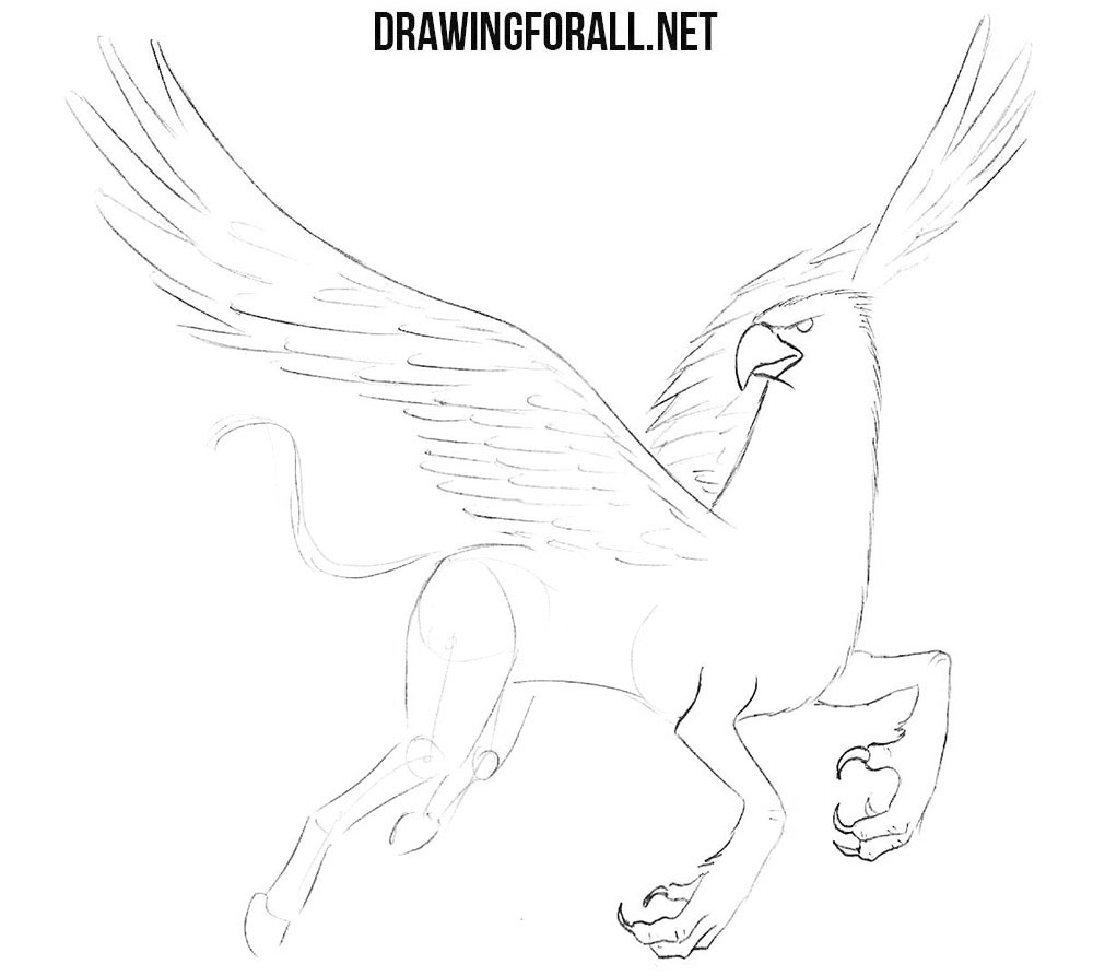 How to draw a hippogriff step by step