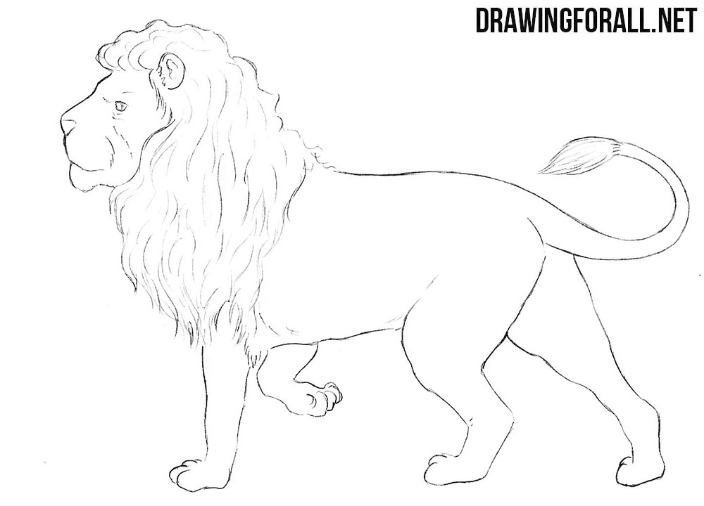 Nemean lion drawing