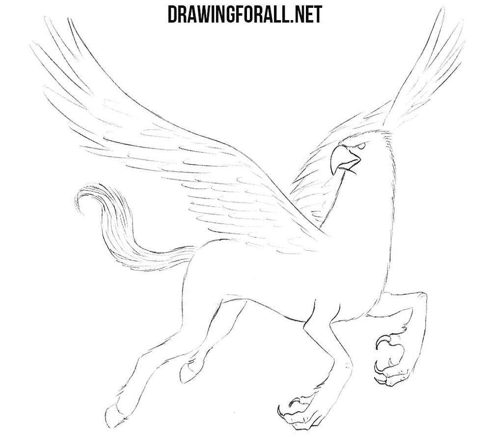 Hippogriff drawing tutorial