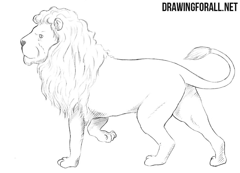 How to draw a Nemean lion