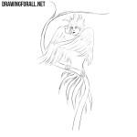 How to Draw Gamayun