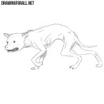 How to Draw a Chupacabra