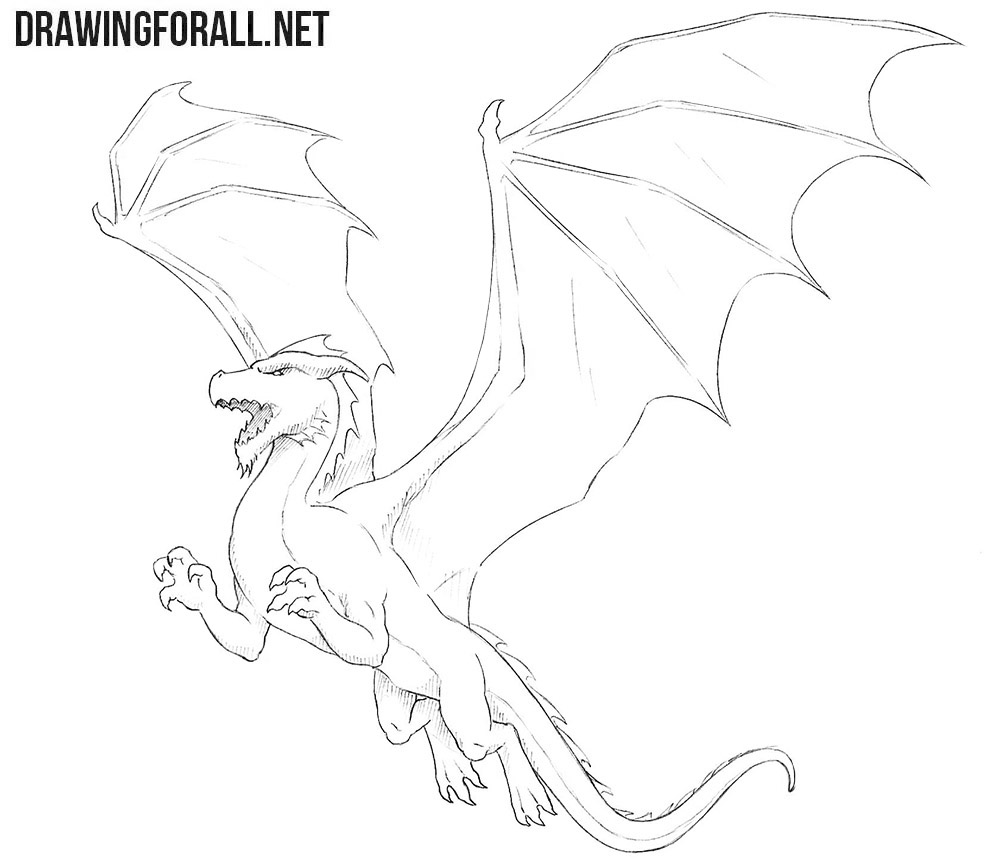 Dragon for beginners drawing
