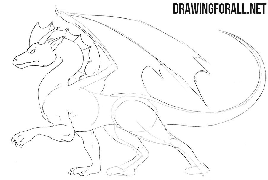 How to draw a standing dragon for beginners