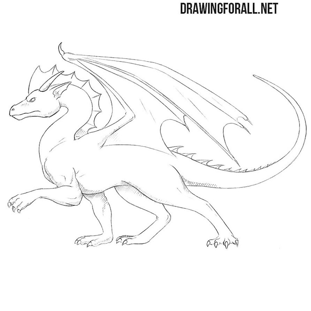 How to draw a standing dragon drawingforall net