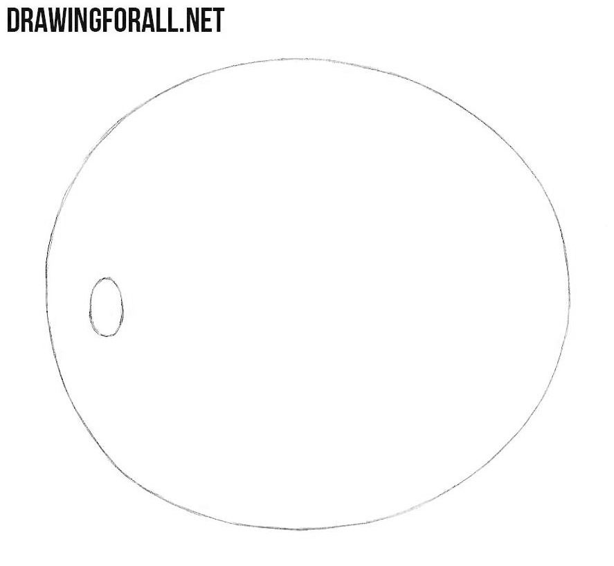 How to draw a melon step by step