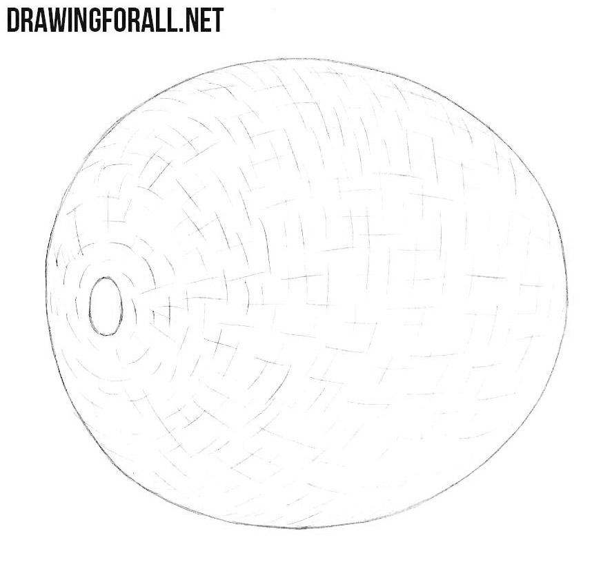 How to draw a melon easy
