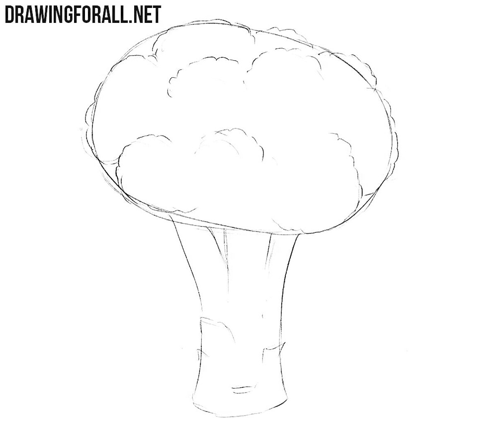 How to sketch a broccoli