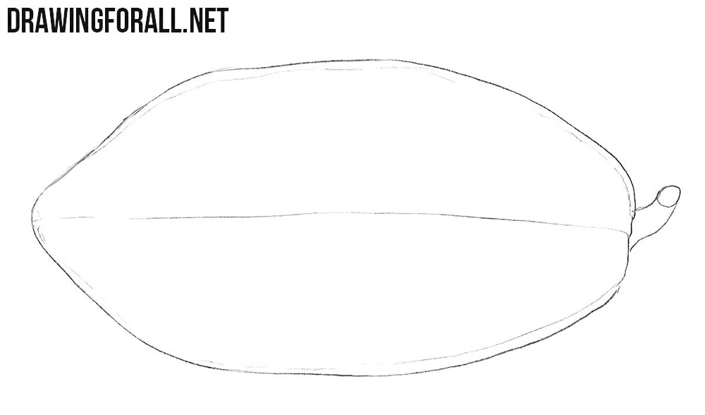 How to sketch a papaya easy