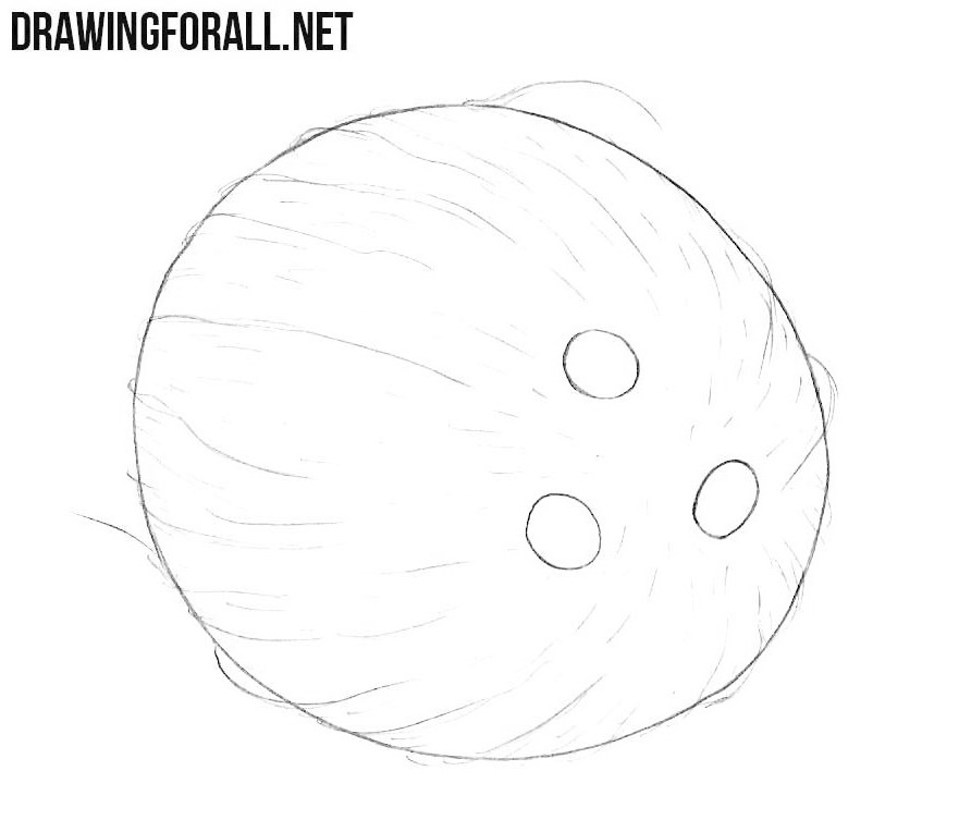 Coconut drawing tutorial