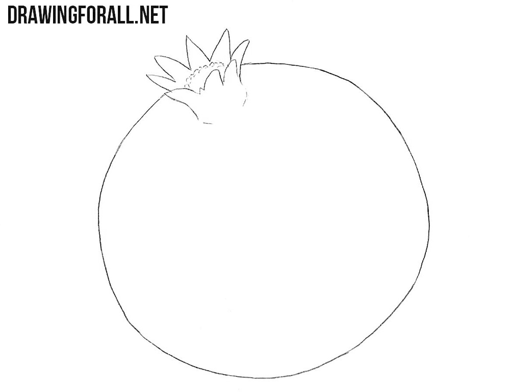 How to draw a pomegranate step by step