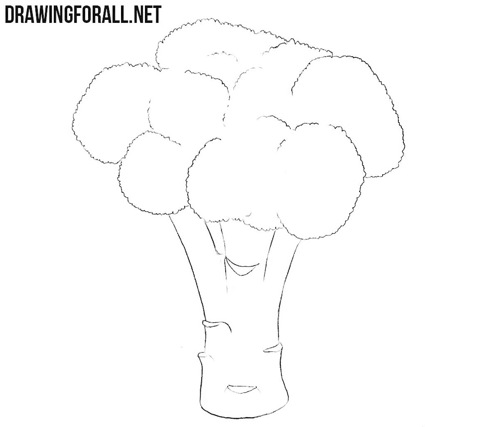 Learn how to draw a broccoli step by step