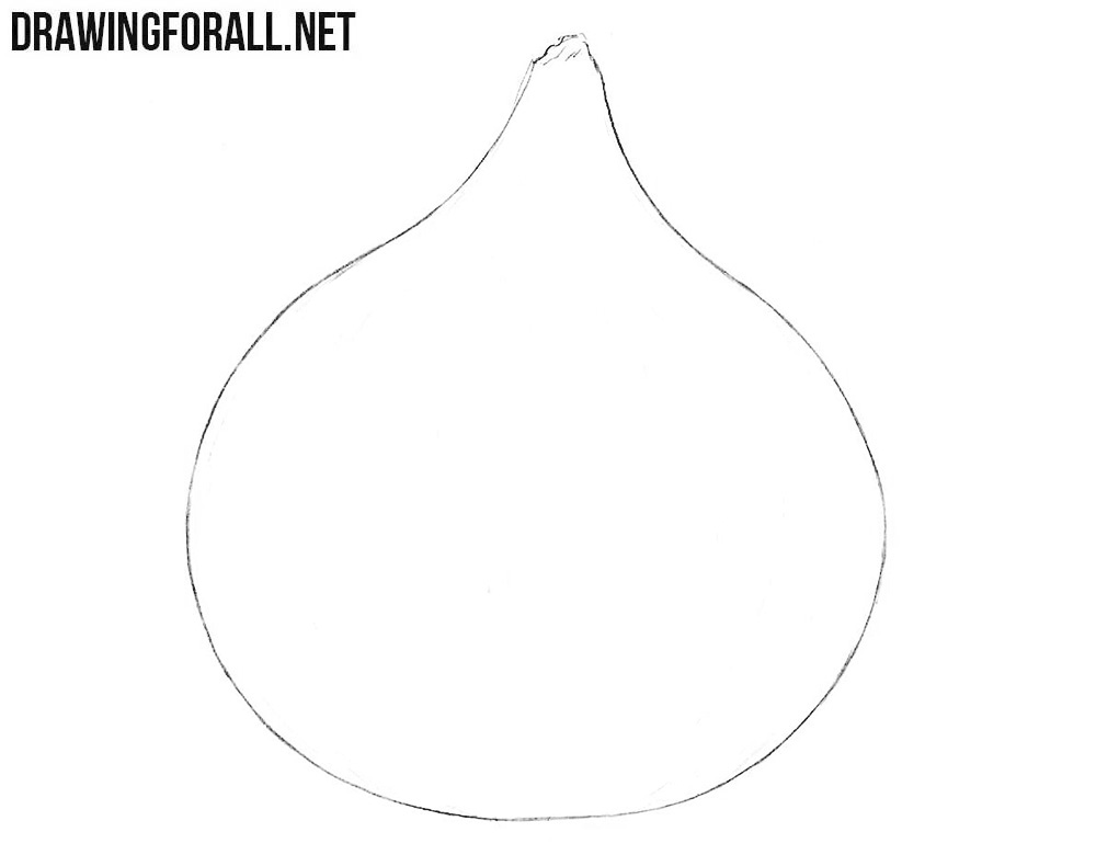 Learn how to draw an onion