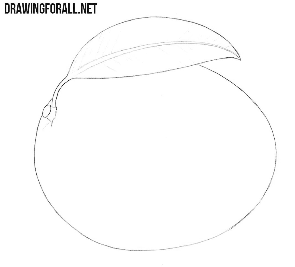Mango drawing tutorial