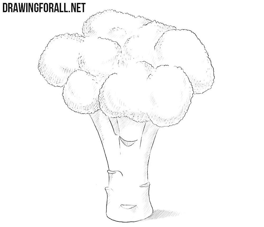 How to draw a broccoli